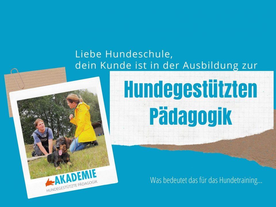 Bild zur Broschüre Hundegestützte Pädagogik